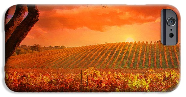 Vineyard Art iPhone Cases - The other side of Oz Vineyard iPhone Case by Stephanie Laird
