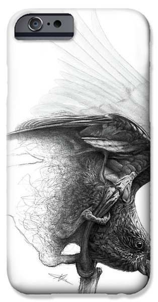 Expressive Drawings iPhone Cases - The Parrot iPhone Case by Christian Klute