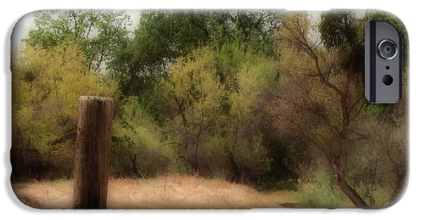 Pathway iPhone Cases - The Path by The Post iPhone Case by Kathy Franklin