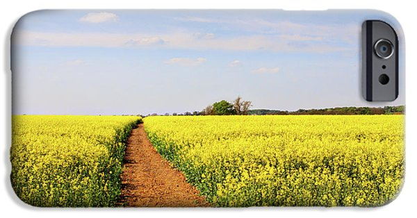Canola Field iPhone Cases - The Path to Bosworth Field iPhone Case by John Edwards