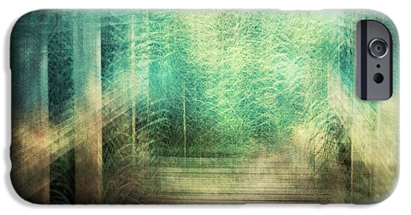 Nature Abstract iPhone Cases - The Path iPhone Case by Violet Gray