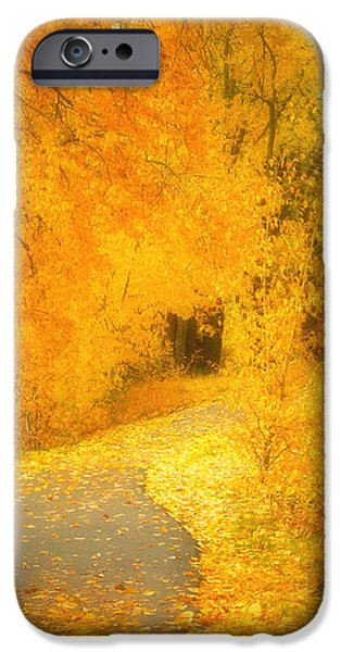 The Pathway of Fallen Leaves iPhone Case by Tara Turner