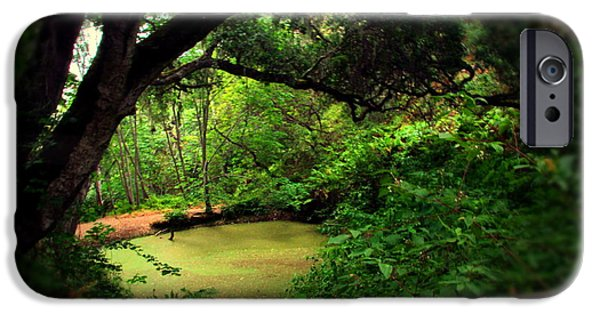 Tree Art Print iPhone Cases - The Pond Below Inspiration Point At Garland Park iPhone Case by Joyce Dickens