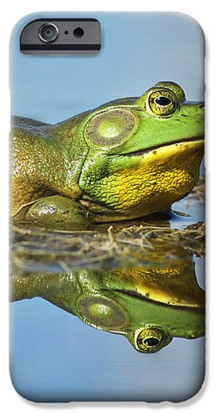 The pond king iPhone Case by Mircea Costina Photography
