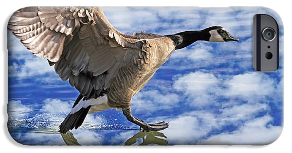Flight iPhone Cases - The Professional iPhone Case by Donna Kennedy