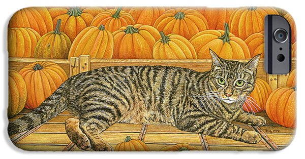 Orange Tabby Paintings iPhone Cases - The Pumpkin Cat iPhone Case by Ditz