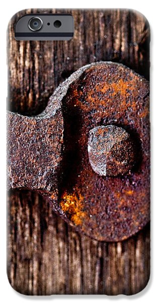 The Rusty Hinge iPhone Case by Lisa Russo