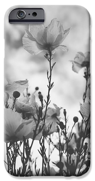 Monotone iPhone Cases - The Same Air You Breathe iPhone Case by Laurie Search