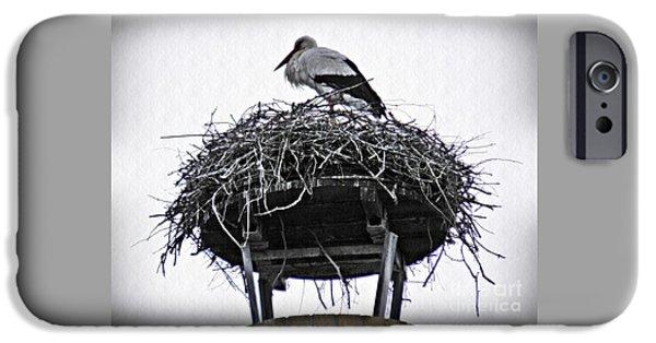 Stork iPhone Cases - The Schierstein Stork iPhone Case by Sarah Loft