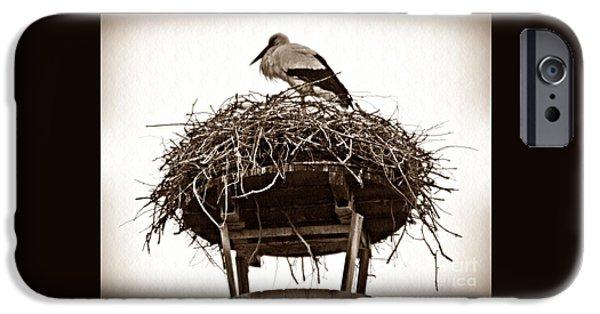 Stork iPhone Cases - The Schierstein Stork Sepia iPhone Case by Sarah Loft