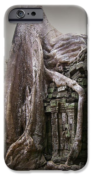 Tree Roots iPhone Cases - The Secrets of Angkor iPhone Case by Eena Bo