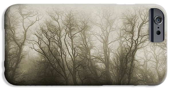 Abstract Digital iPhone Cases - The Secrets of the Trees iPhone Case by Scott Norris