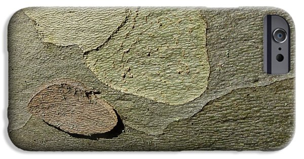 Built Structure iPhone Cases - The Skin of Tree iPhone Case by Jean Bernard Roussilhe