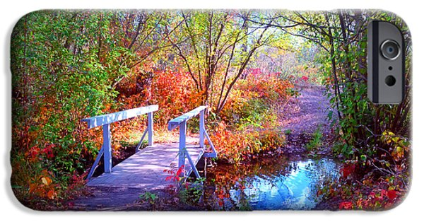 Pastel iPhone Cases - The Small Bridge at the Beginning of Autumn iPhone Case by Tara Turner