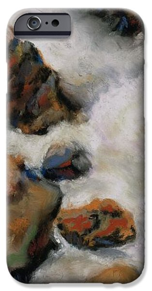 River Pastels iPhone Cases - The Stream Runs Through It iPhone Case by Frances Marino