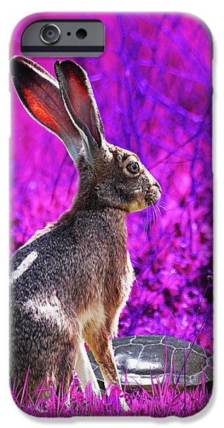 The Tortoise and the Hare . Magenta Square iPhone Case by Wingsdomain Art and Photography