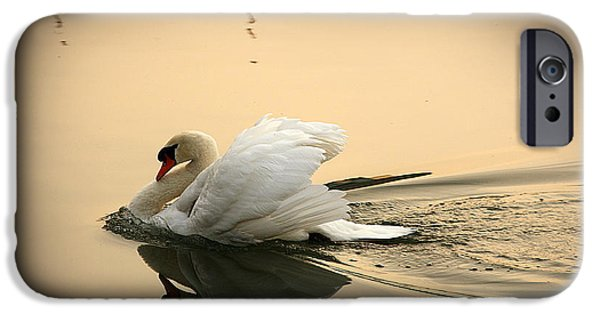 Swans... iPhone Cases - The Ugly Duckling iPhone Case by Eena Bo