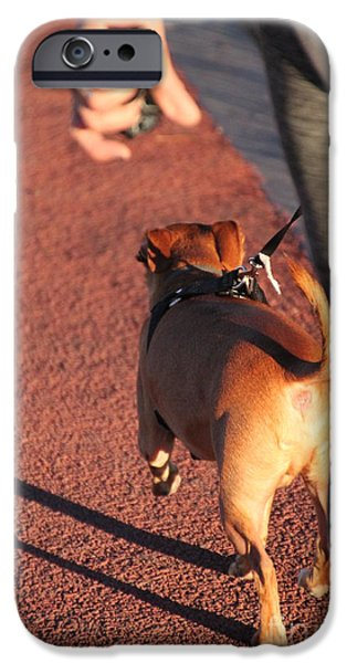 Dog Trots Photographs iPhone Cases - The walk iPhone Case by Jennifer Doll