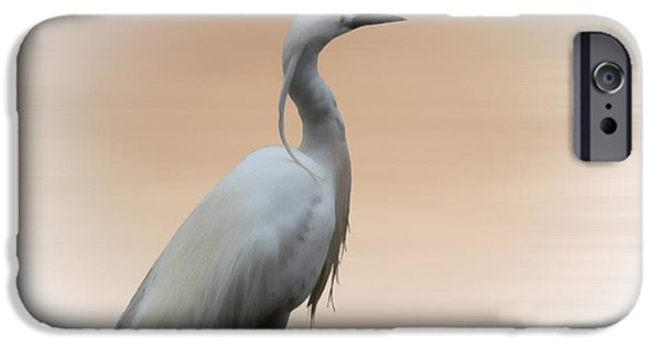 Animals Photographs iPhone Cases - The Water bird iPhone Case by Sharon Lisa Clarke