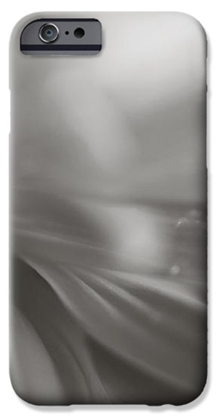The Way Your Eyes Sparkle iPhone Case by Laurie Search
