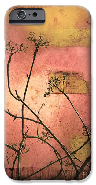 Tara Turner iPhone Cases - The Weeds iPhone Case by Tara Turner