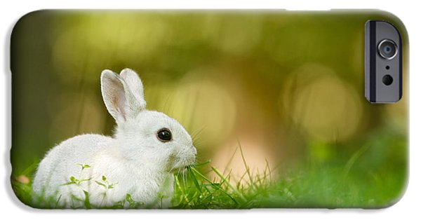 Afternoon iPhone Cases - The White Rabbit iPhone Case by Roeselien Raimond