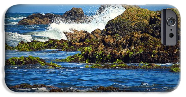 Business Photographs iPhone Cases - The Wild And Wonderful Pacific Three iPhone Case by Joyce Dickens