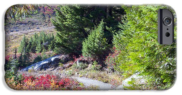 Pathway iPhone Cases - The Winding Path iPhone Case by Emerita Wheeling