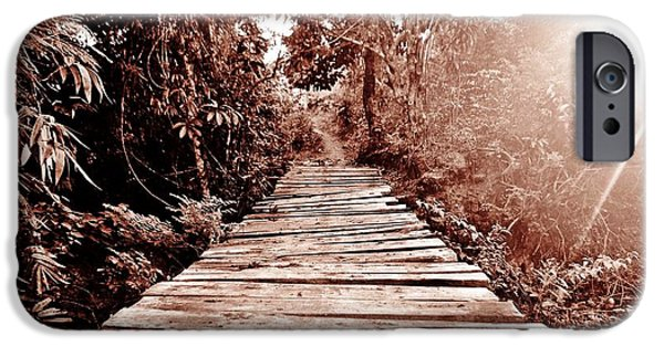 Creepy iPhone Cases - The Wooden Bridge Sepia iPhone Case by Sharmaigne Foja