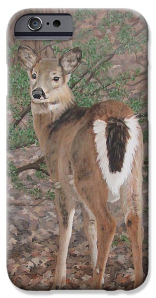 iPhone Cases - The Yearling iPhone Case by Sandra Chase
