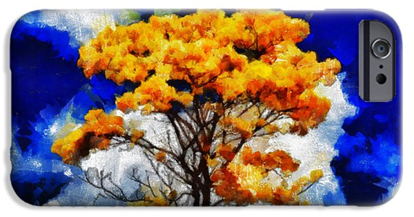D.c. iPhone Cases - The Yellow Wishing Tree - You Gonna Be Yery Lucky  iPhone Case by Sir Josef  Putsche