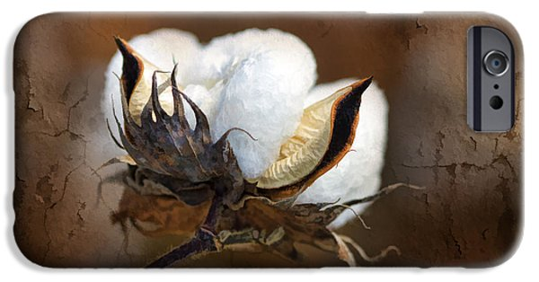 Tan iPhone Cases - Them Cotton Bolls iPhone Case by Kathy Clark
