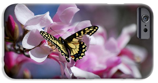 Becky Photographs iPhone Cases - #themultiplicityofappearanceswecalllife iPhone Case by Becky Furgason