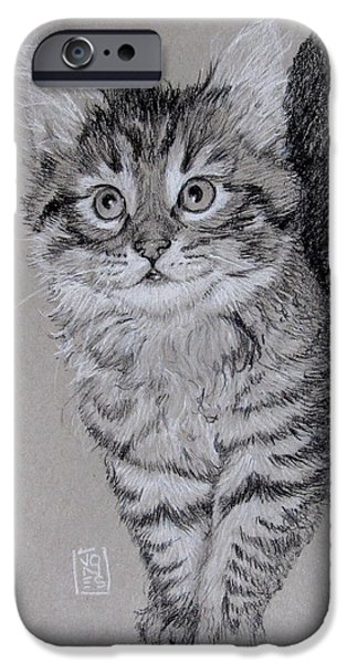 Maine Drawings iPhone Cases - Thing One iPhone Case by Debra Jones