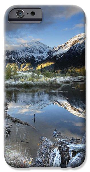 Nature Center Pond iPhone Cases - Thoreau iPhone Case by Ed Boudreau