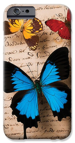 Flight iPhone Cases - Three butterflies iPhone Case by Garry Gay