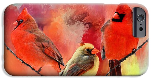 Birds iPhone Cases - Three Cardinals in Summer iPhone Case by Janette Boyd