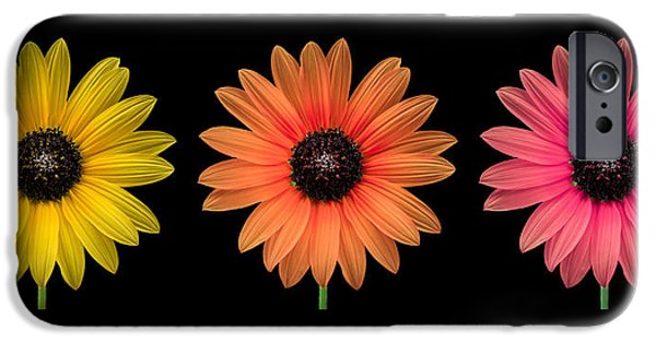 Floral Photographs iPhone Cases - Three Flowers iPhone Case by Hudson Marsh