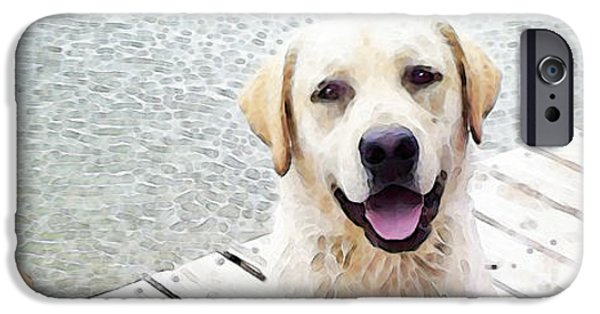 Boxer Dog iPhone Cases - Three Friends iPhone Case by Sharon Cummings