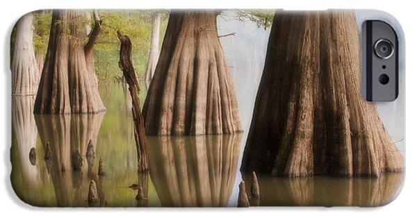 Arkansas iPhone Cases - Three Kings iPhone Case by Jonas Wingfield