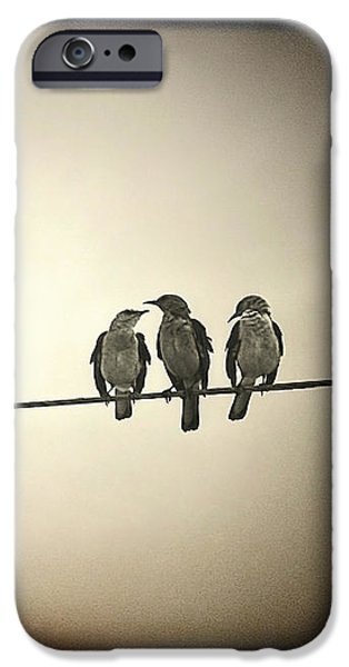 Best Sellers -  - Electrical iPhone Cases - Three Little Birds iPhone Case by Trish Mistric