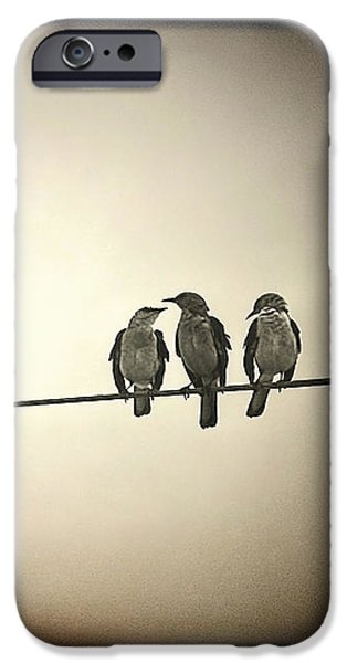 Little iPhone Cases - Three Little Birds iPhone Case by Trish Mistric