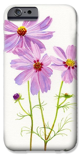 Cosmos Paintings iPhone Cases - Three Pink Cosmos Blossoms 2 iPhone Case by Sharon Freeman