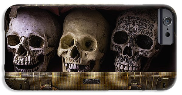 Intrigue iPhone Cases - Three Skulls In Suitcase iPhone Case by Garry Gay