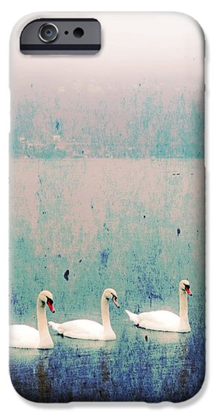 three swans iPhone Case by Joana Kruse