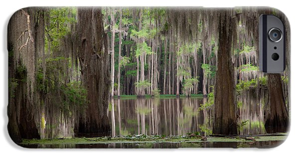 Caddo Lake iPhone Cases - Through The Light iPhone Case by Iris Greenwell