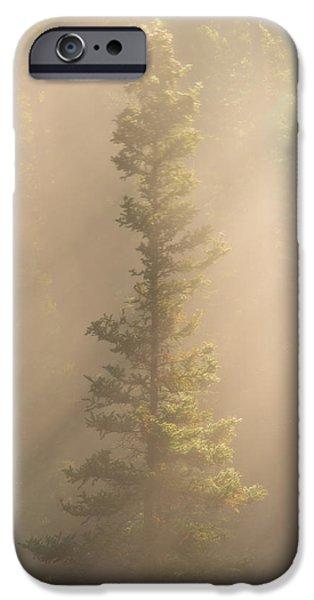 Fog Mist iPhone Cases - Through the Mist iPhone Case by Dustin  LeFevre