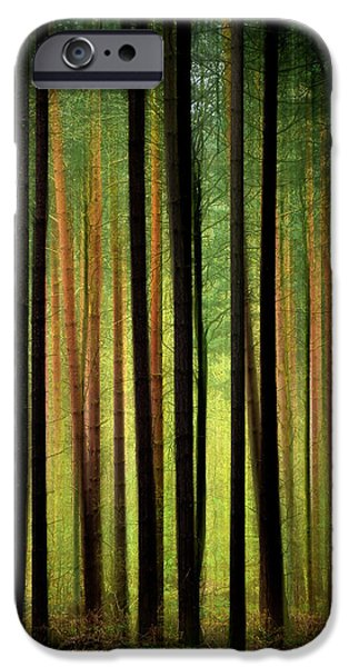Pathway Digital iPhone Cases - Through the Woods iPhone Case by Svetlana Sewell