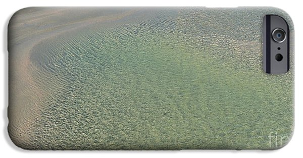 Animals Photographs iPhone Cases - Tidal Pool iPhone Case by Mim White