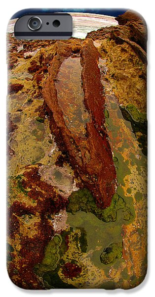 Point Lobos State iPhone Cases - Tide Pool iPhone Case by Harry Spitz